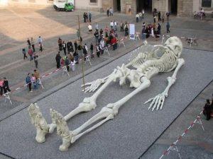 Люди гиганты - древние жители Земли.