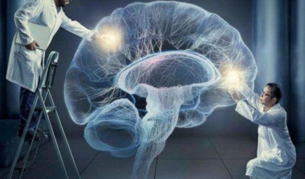 Сознание независимо от мозга и существует как энергетическое поле.