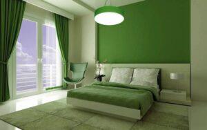 зелёный цвет в жизни