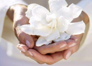 белый цвет в жизни