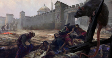 Уроки истории. Что помогает выжить во время эпидемии