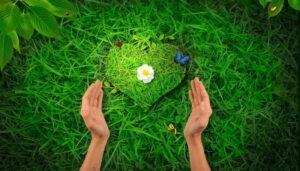 здоровье и доброта связаны